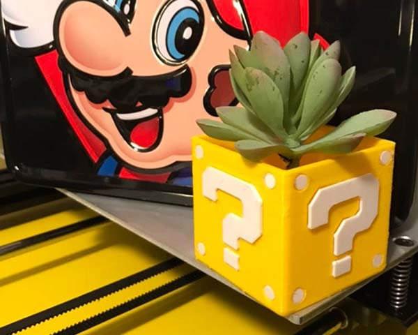3D Printed Mario Bros Question Box Succulent Plant Pot