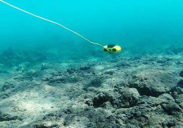 Chasing Dory Underwater Camera Drone