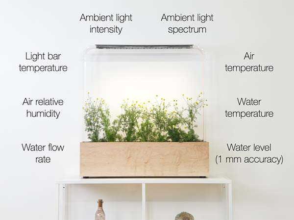 The Herb Garden Smart Indoor Garden