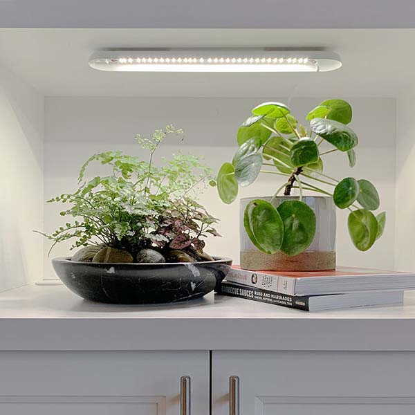 Smart LED Grow Light Improves the Growth of Home Plants