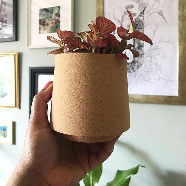 Handmade Atlas Cork Planter