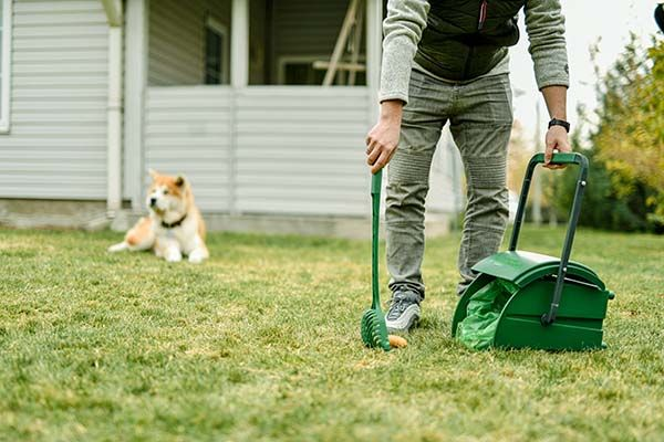 PooPail 2-In-1 Dog Poop Cleaner and Container