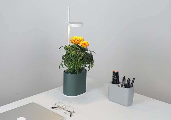 Nano Garden Hydroponic Indoor Planter with LED Light