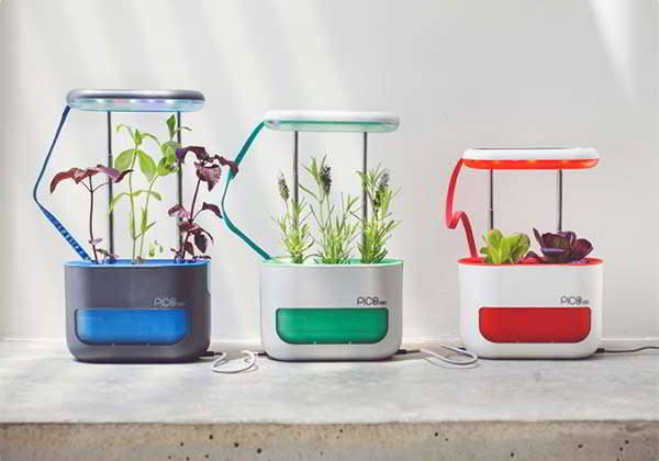 Pico Max Indoor Garden with Self-Watering and LED Grow Light