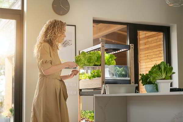 The Click & Grow 25 Modular Indoor Garden with Automated Light and Watering