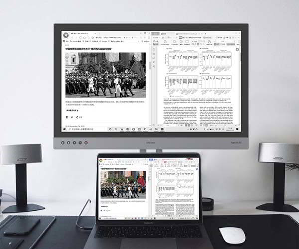 Dasung Paperlike 253 25.3-Inch E-Ink Monitor with 3K Resolution