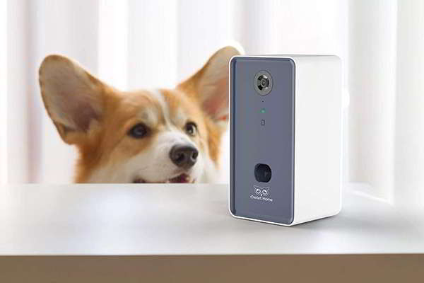 Owlet Home Pet Camera with Treat Dispenser Compatible with Alexa