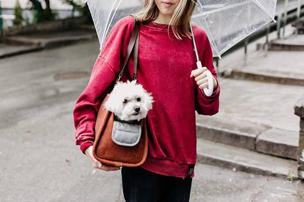 Handmade Leather Dog Carrier Bag with Optional Leash Bag