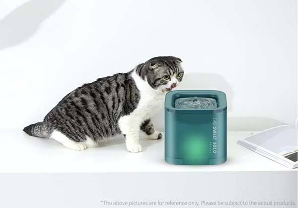 PETIT Eversweet Solo Cat Water Fountain with Filter